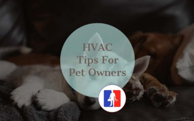 HVAC Maintenance For Pet Owners